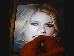 Avril lavigne cumshot